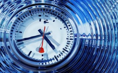 New York Workers Compensation Time Limits